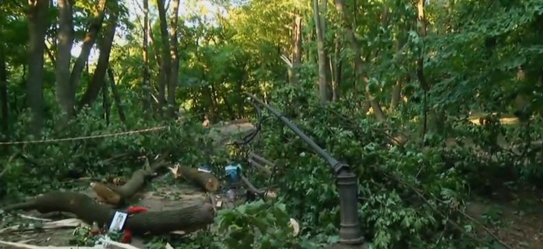 Квіти і лампадки на місці трагедії у Стрийському парку. Територія обгороджена стрічками, там залишився речі загиблих